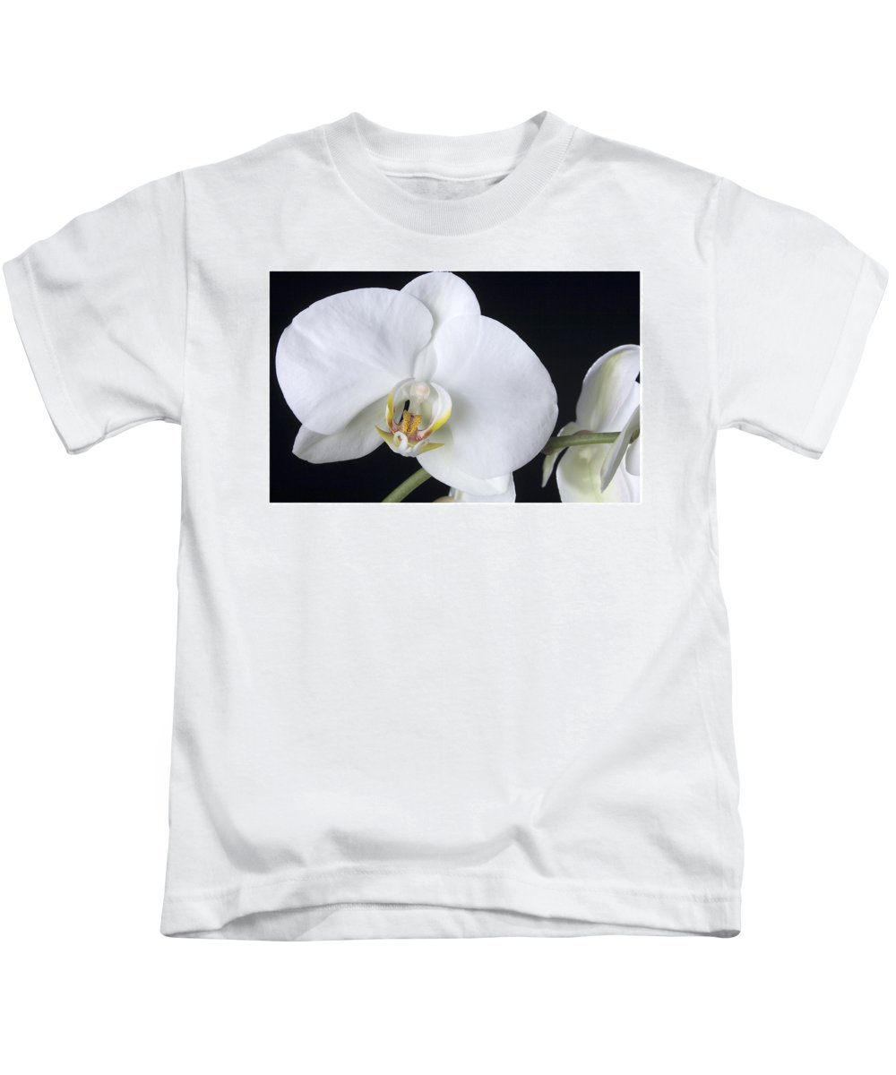 White Orchids On A Black Background Kids T-Shirt featuring the photograph Orchid 2c by Mauro Celotti