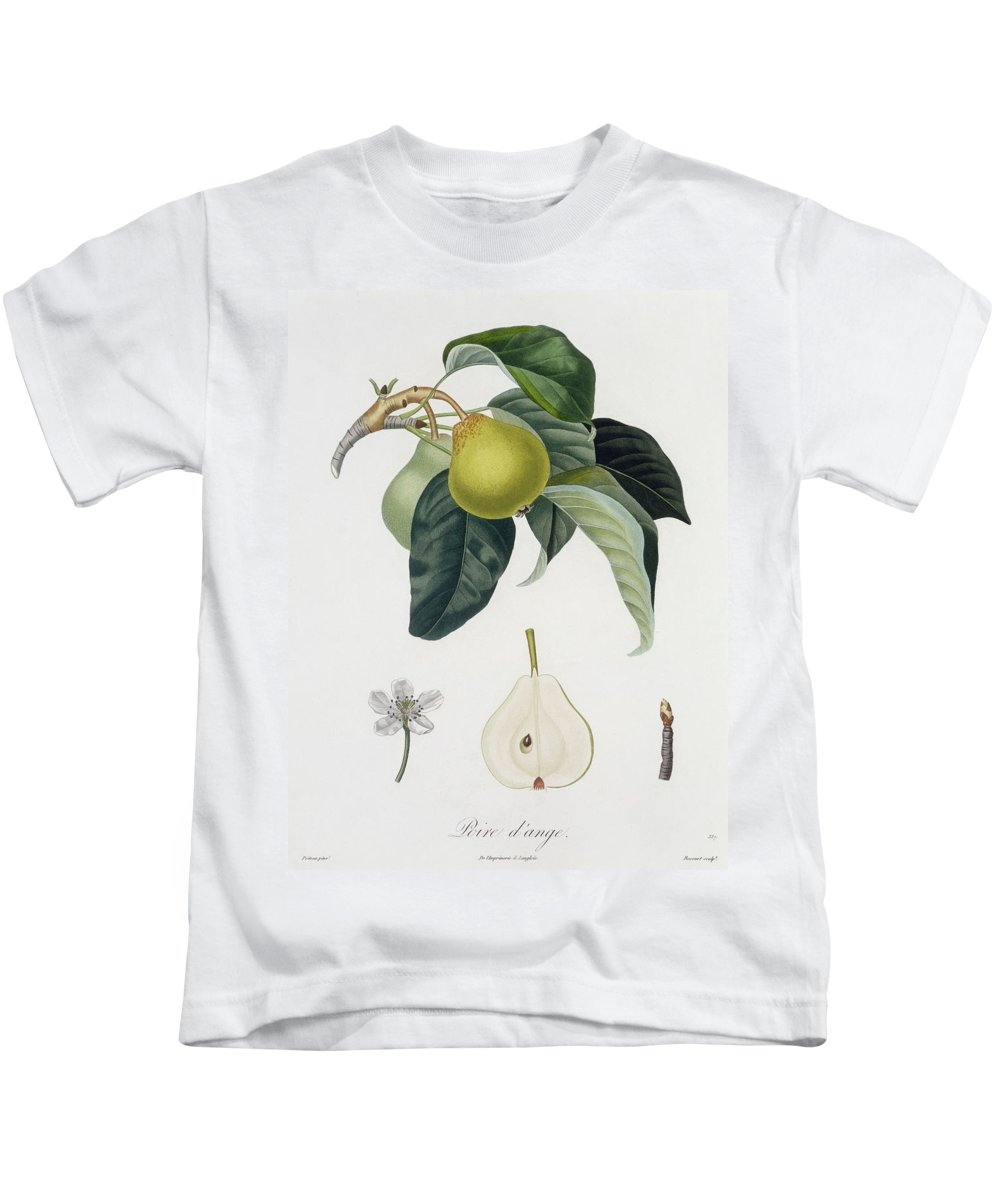 Pear Kids T-Shirt featuring the painting Pear by Pierre Antoine Poiteau