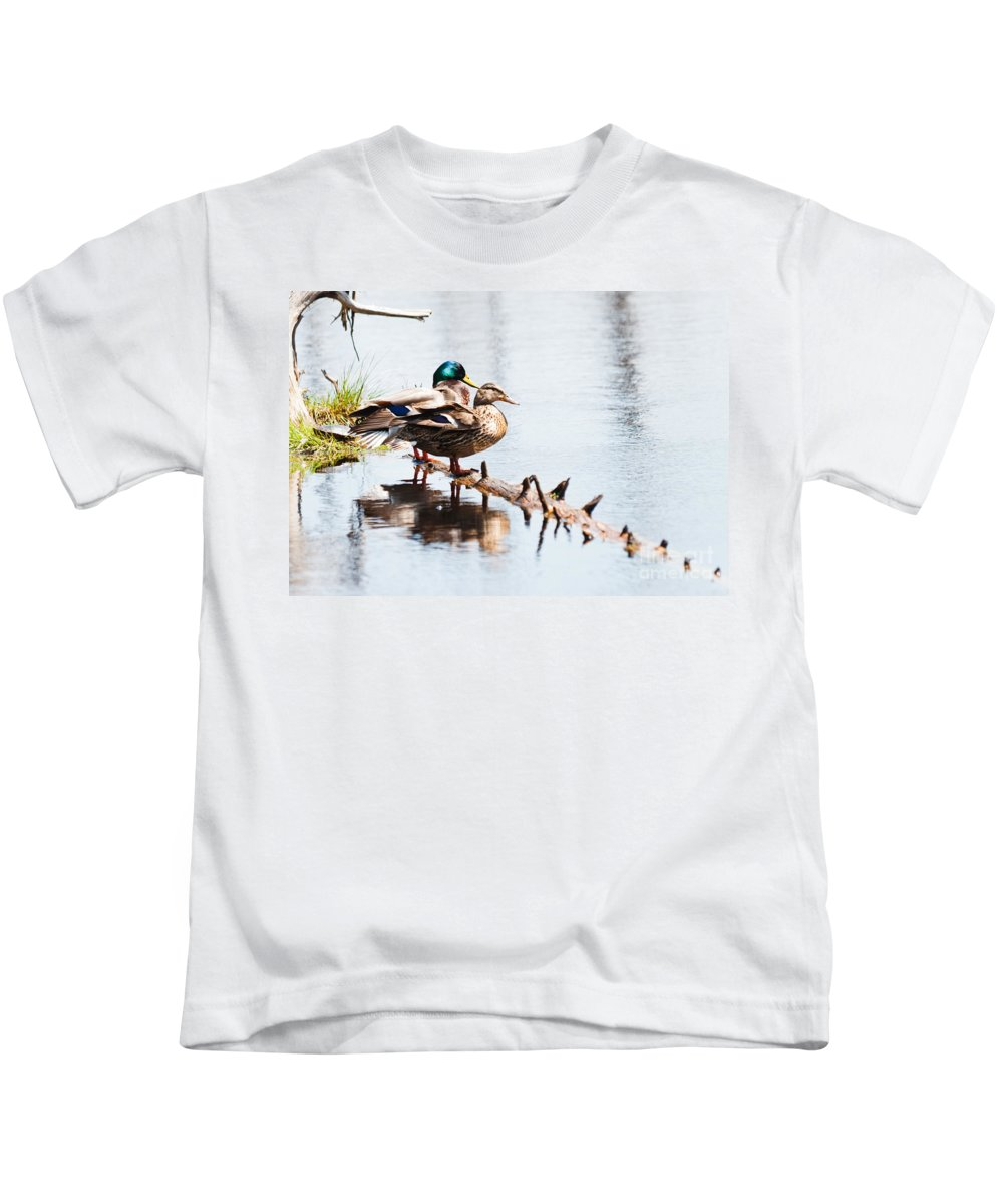 Mallard Kids T-Shirt featuring the photograph Perfect Pair by Cheryl Baxter