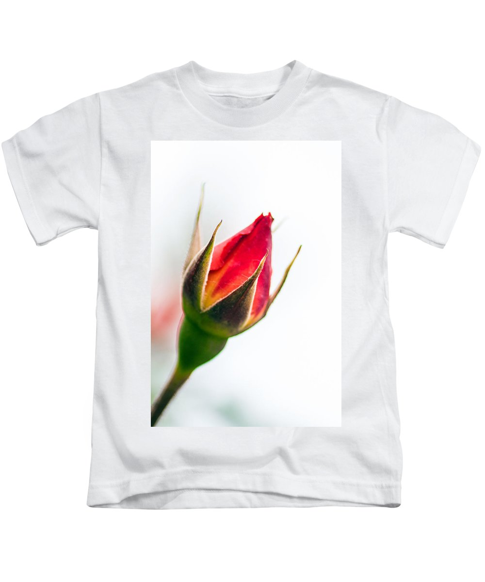 Bumble Bee Kids T-Shirt featuring the photograph Redbud by Sennie Pierson
