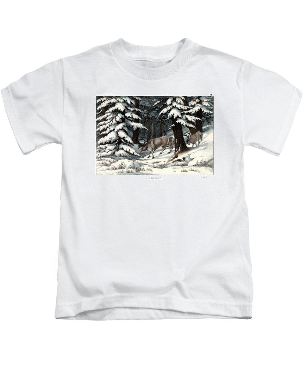 Wild Animals Kids T-Shirt featuring the drawing Reindeer by Splendid Art Prints