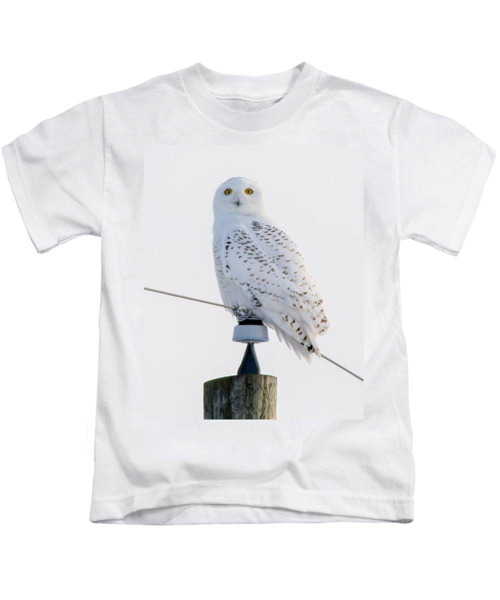 Bird Kids T-Shirt featuring the photograph Snowy Owl by Richard Kitchen