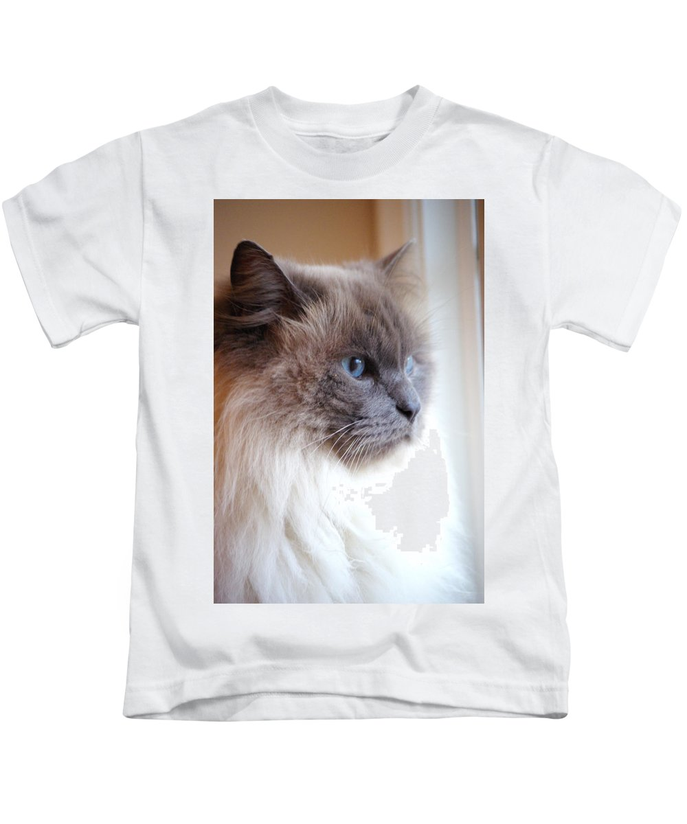 Cat Kids T-Shirt featuring the photograph Still Waiting by Cindy Johnston
