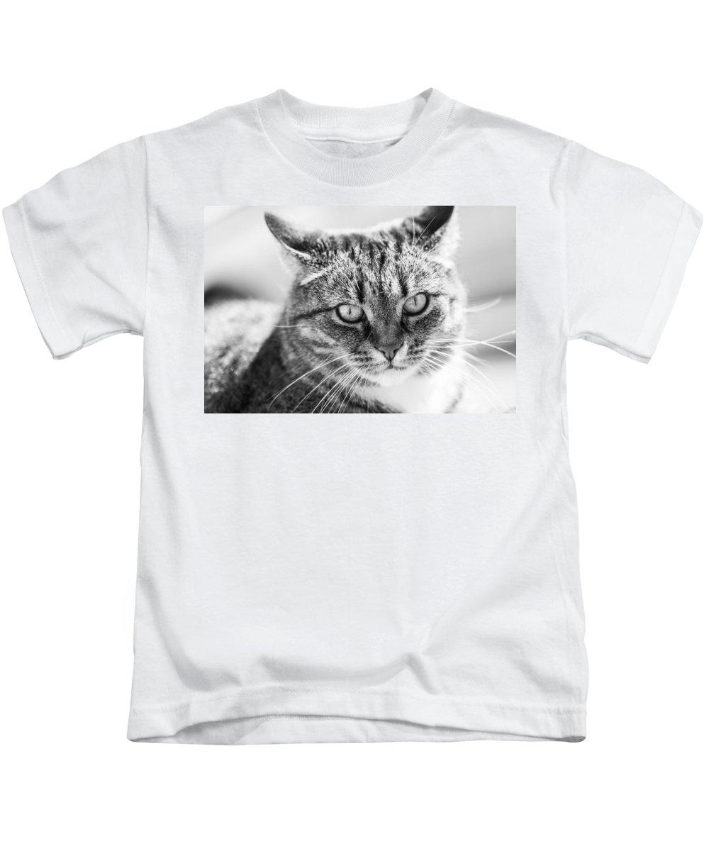Cat Kids T-Shirt featuring the photograph Surprised Cat by Hakon Soreide