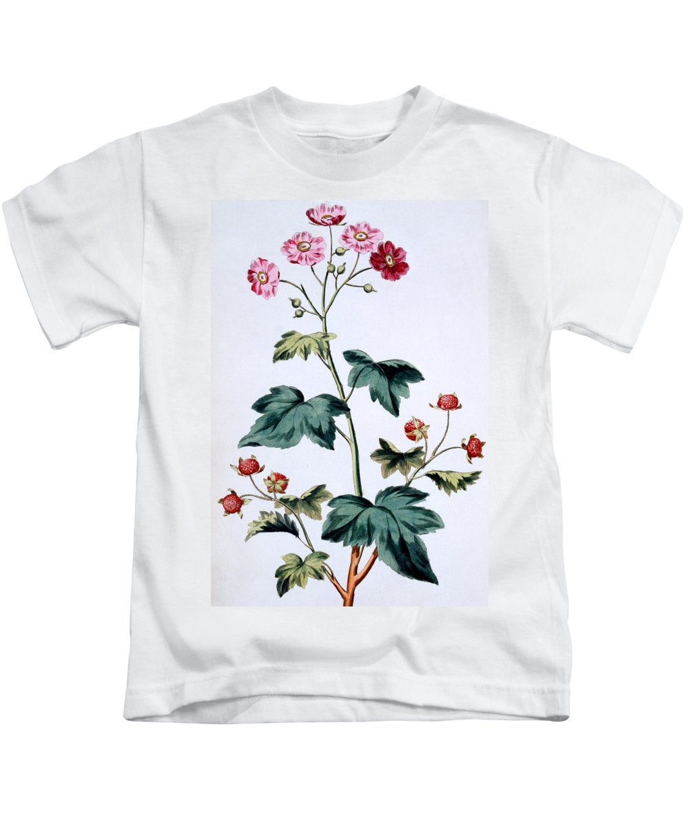 Still-life Kids T-Shirt featuring the painting Sweet Canada Raspberry by John Edwards