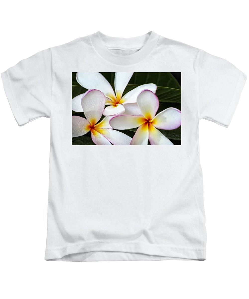 Plumeria Kids T-Shirt featuring the photograph Tropical Maui Plumeria by Susan Candelario