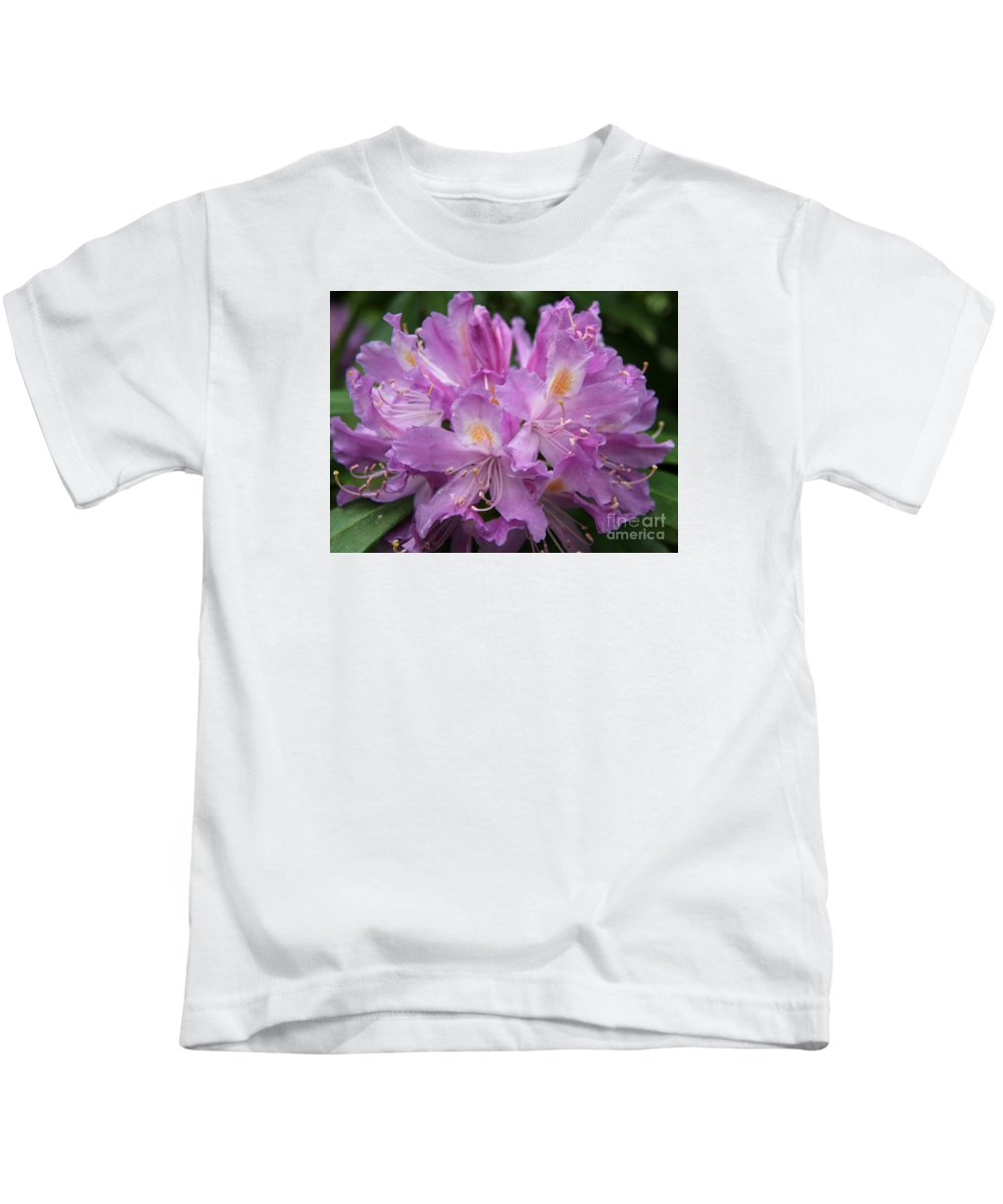Rhododendron Kids T-Shirt featuring the photograph Violet Pleasure by Christiane Schulze Art And Photography