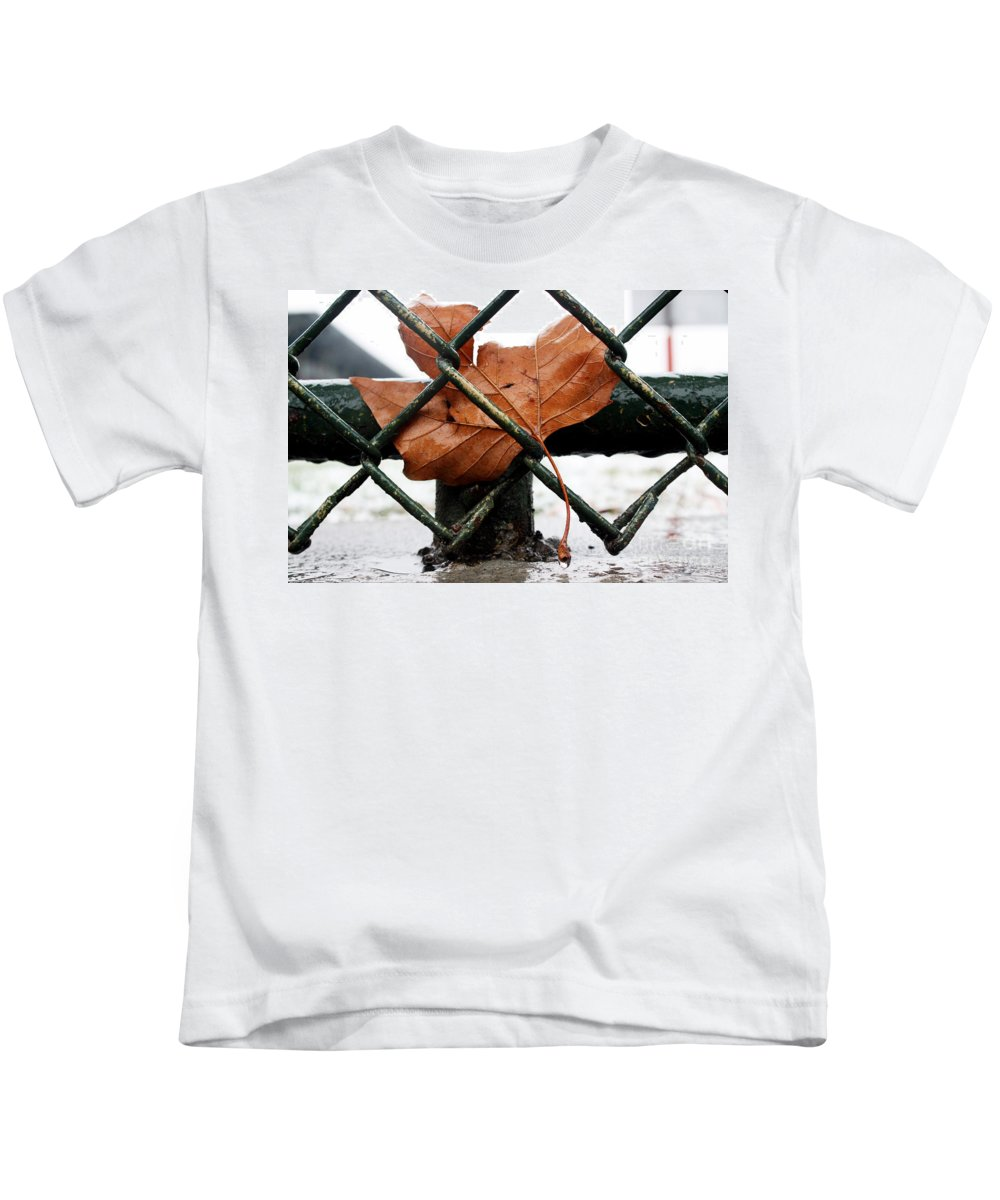 Water Kids T-Shirt featuring the photograph Water Leaf by Mark Ashkenazi