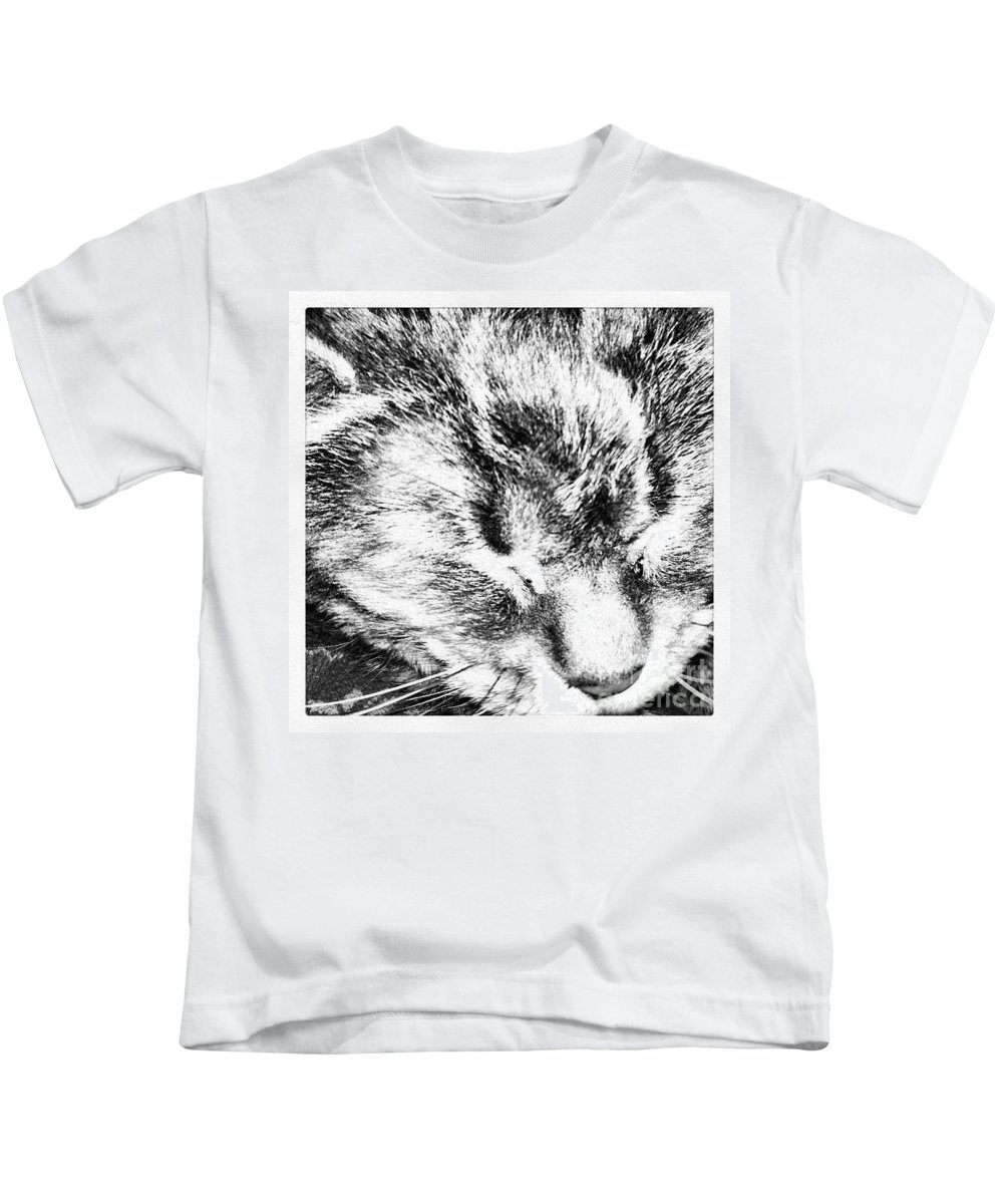 Cats Kids T-Shirt featuring the photograph Whiskers by Stephanie Bland