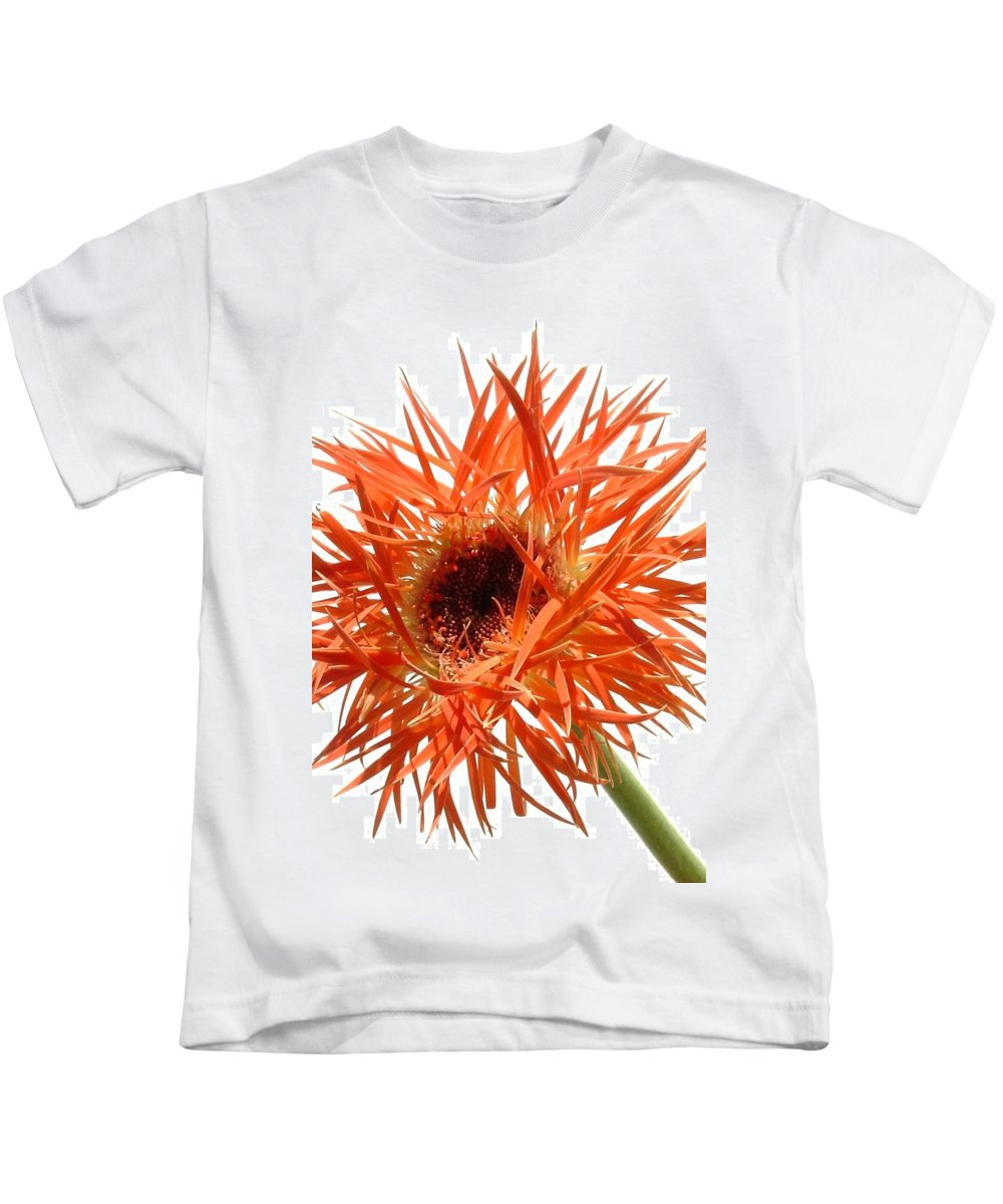 Gerbera Photographs Kids T-Shirt featuring the photograph 0688c-004 by Kimberlie Gerner Wells