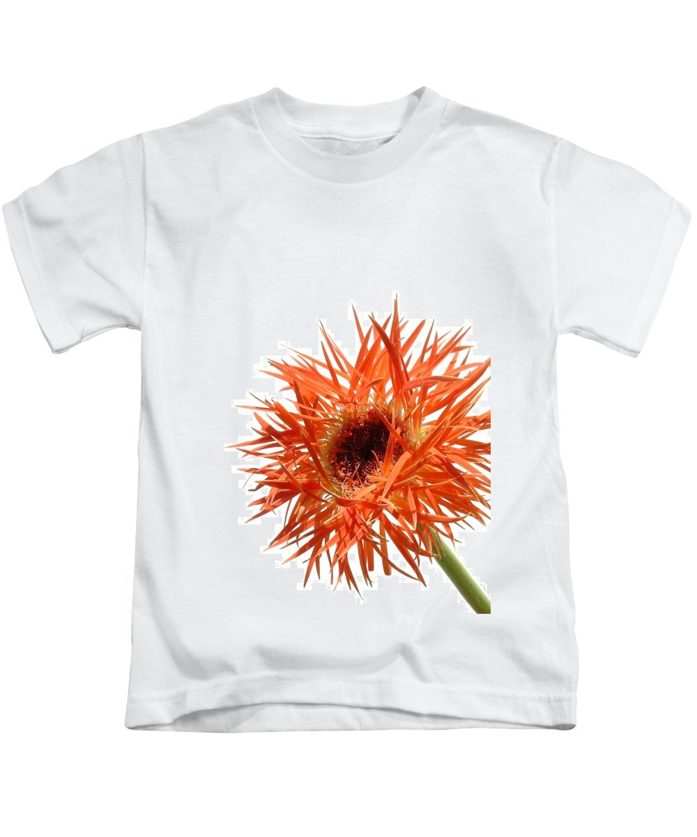 Gerbera Photographs Kids T-Shirt featuring the photograph 0688c-010 by Kimberlie Gerner