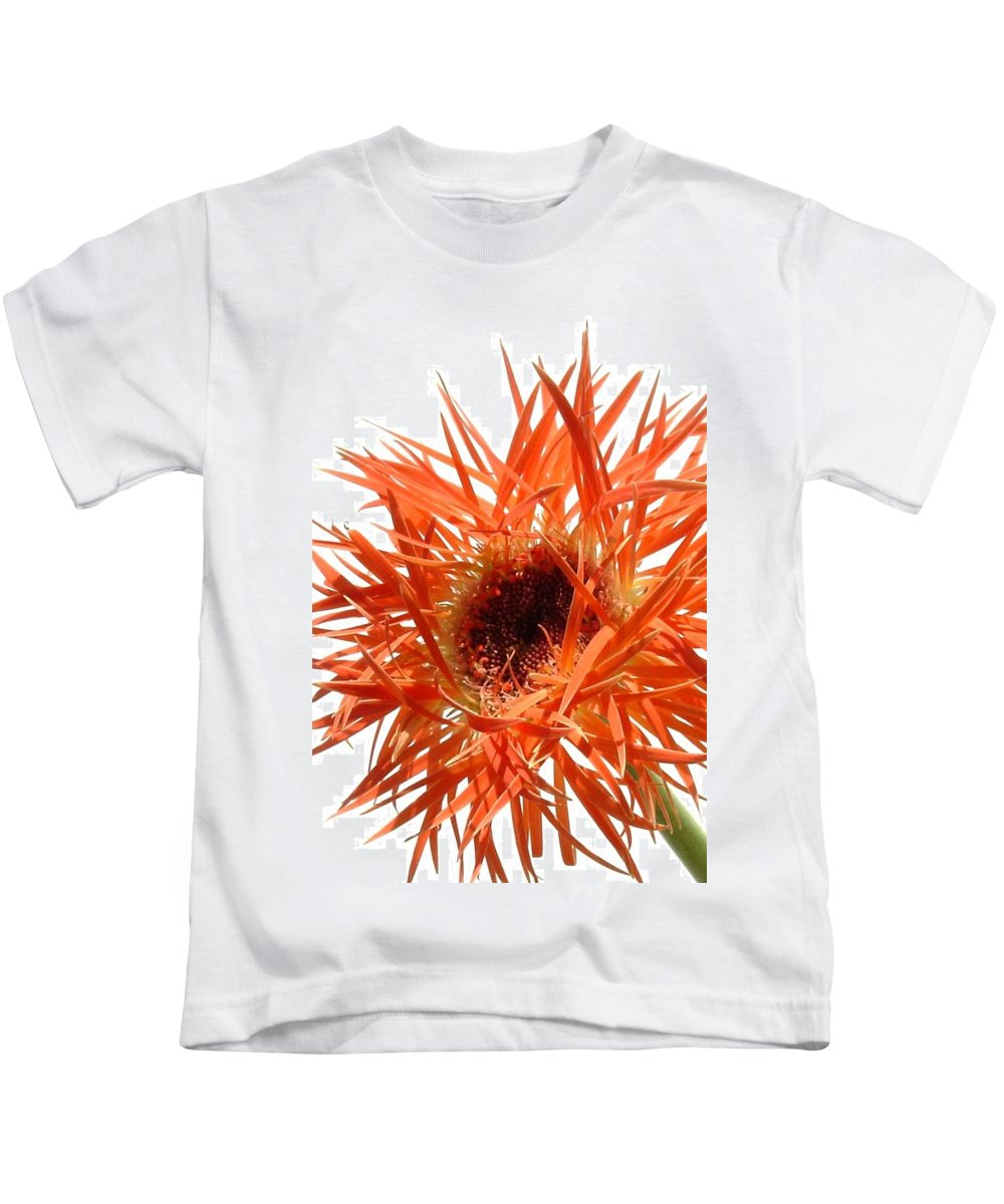 Gerbera Photographs Kids T-Shirt featuring the photograph 0688c-012 by Kimberlie Gerner