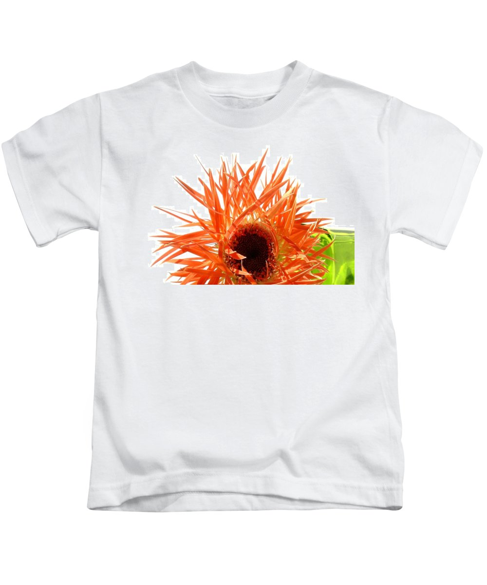 Gerbera Photographs Kids T-Shirt featuring the photograph 0690c-010 by Kimberlie Gerner