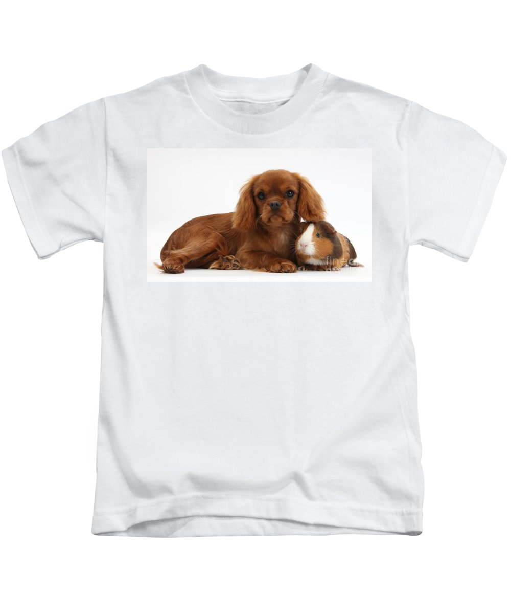 Nature Kids T-Shirt featuring the photograph Ruby Cavalier King Charles Spaniel Pup by Mark Taylor