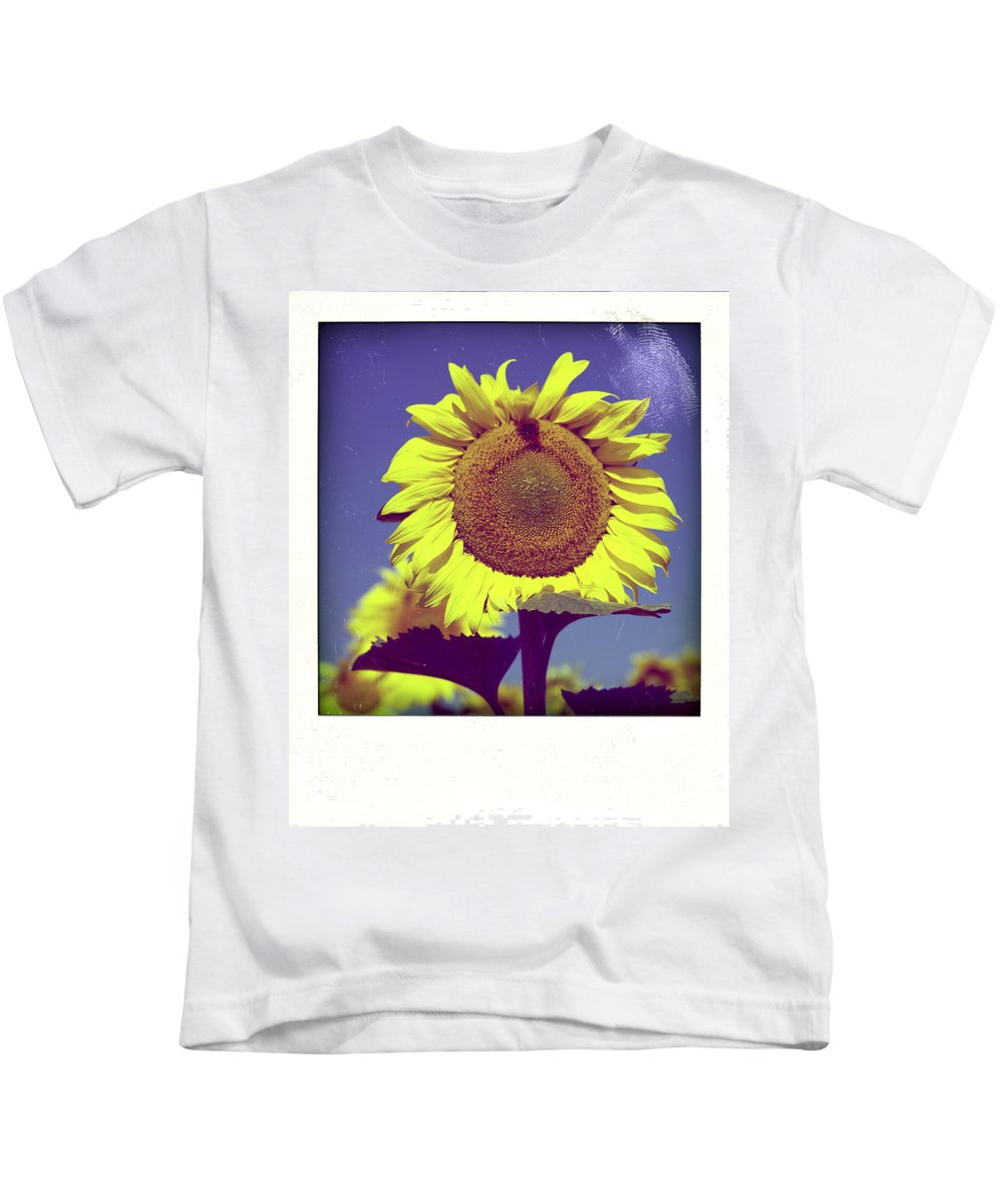 Auvergne Puy De Dome France French Agricultural Agriculture Crop Cultivate Nature Cultivation Rural Countryside Sunflowers Plant Plants Oil Yellow Flowers Flower Close Up Summer Bloom Blossom Blooming Kids T-Shirt featuring the photograph Sunflower by Bernard Jaubert