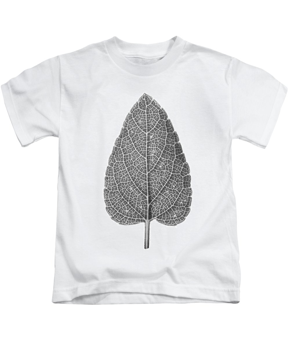 Autumn Kids T-Shirt featuring the photograph Leaf by Jason Smith