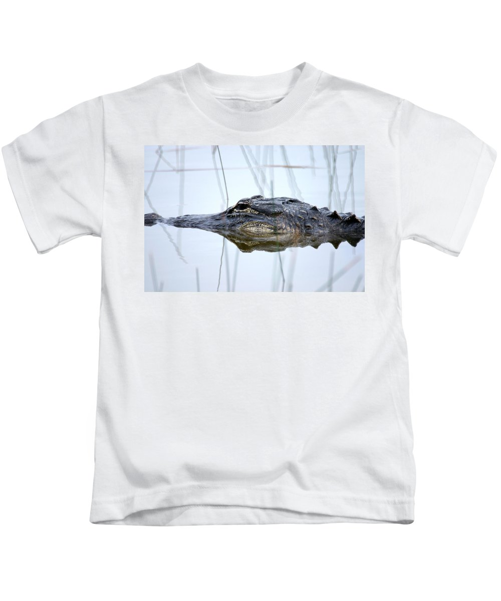 Art Kids T-Shirt featuring the photograph Alligator In The Everglades by Randall Nyhof