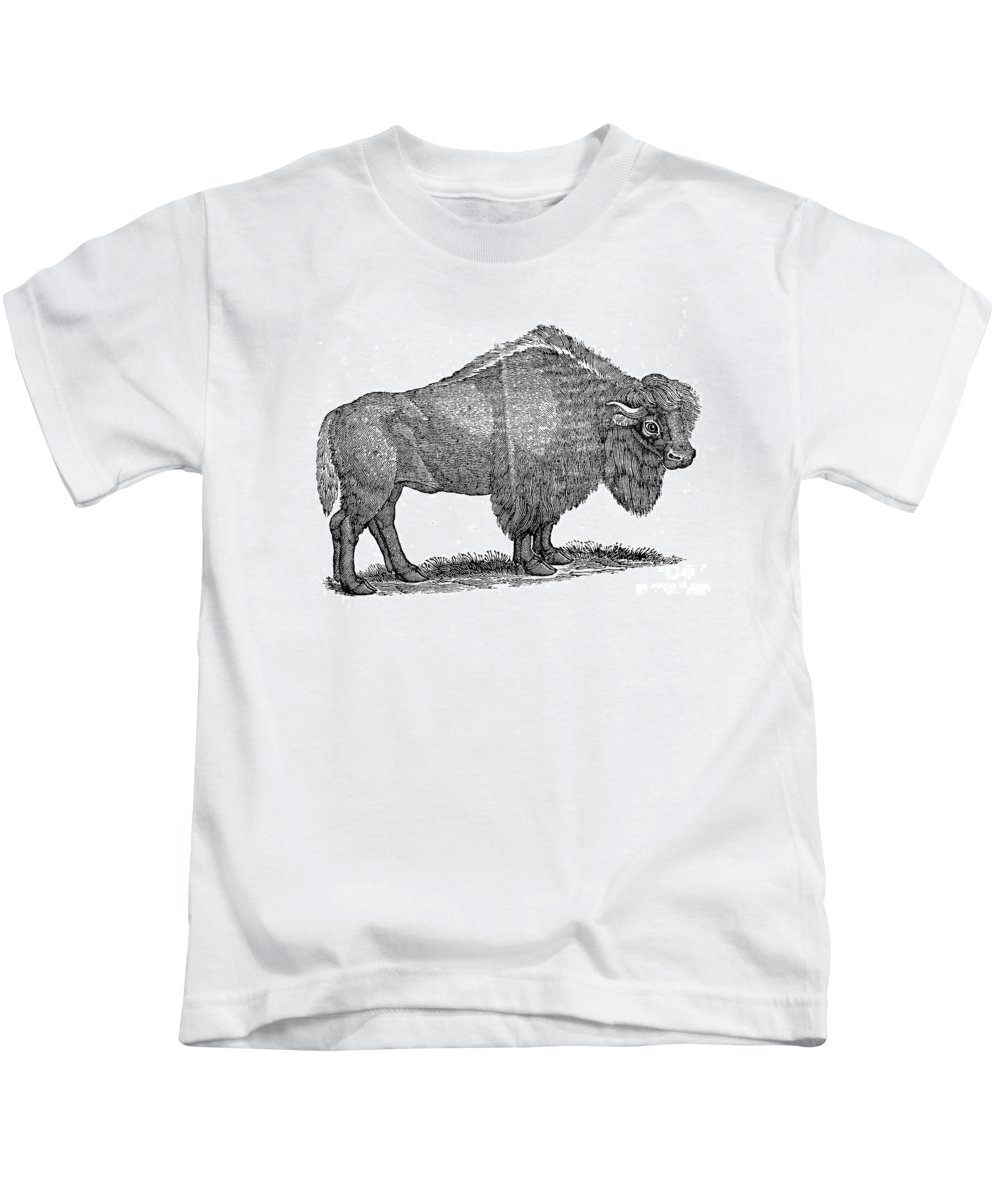 1840 Kids T-Shirt featuring the photograph American Buffalo by Granger