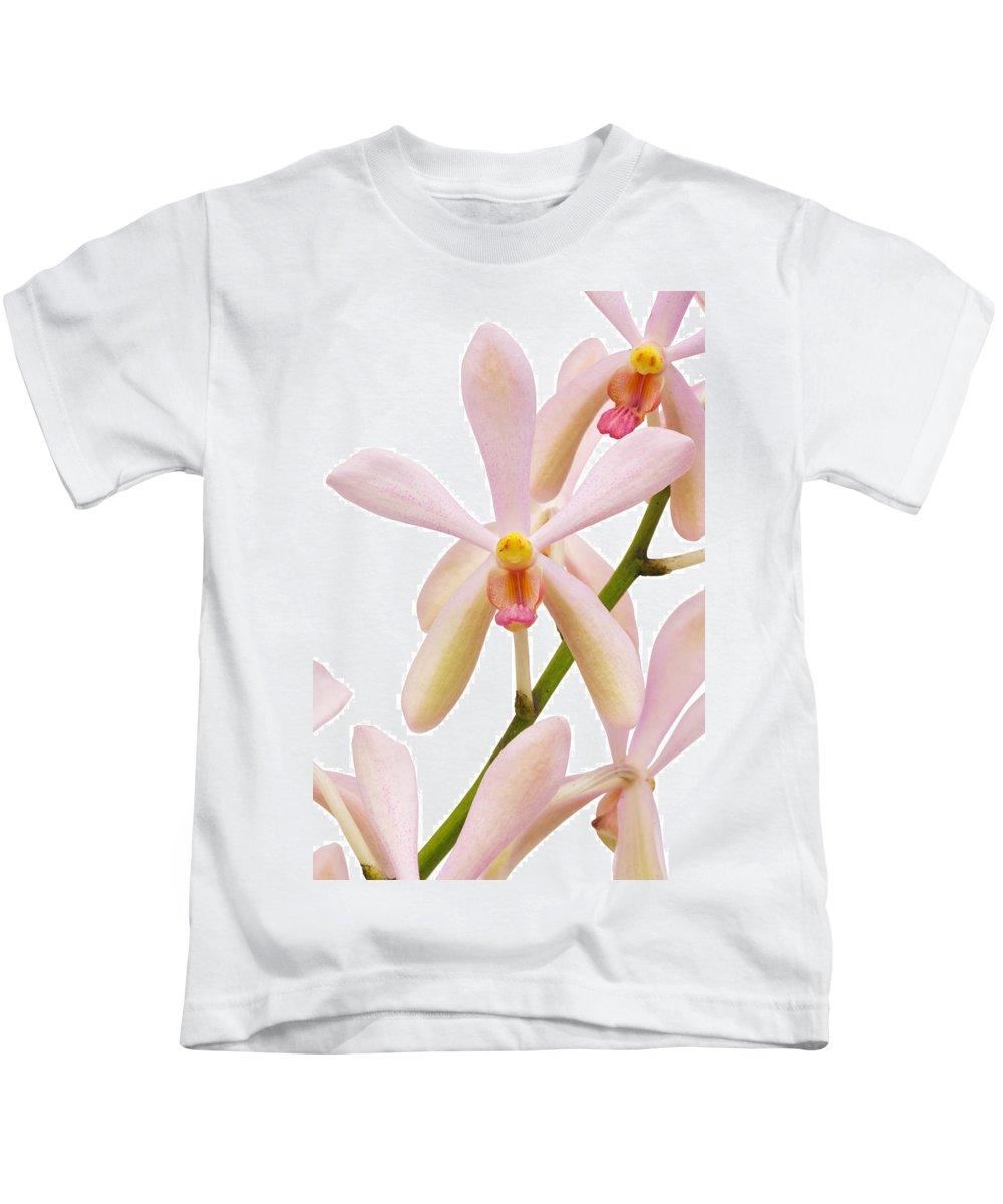 Asian Kids T-Shirt featuring the photograph Closeup Pink Orchid by Atiketta Sangasaeng