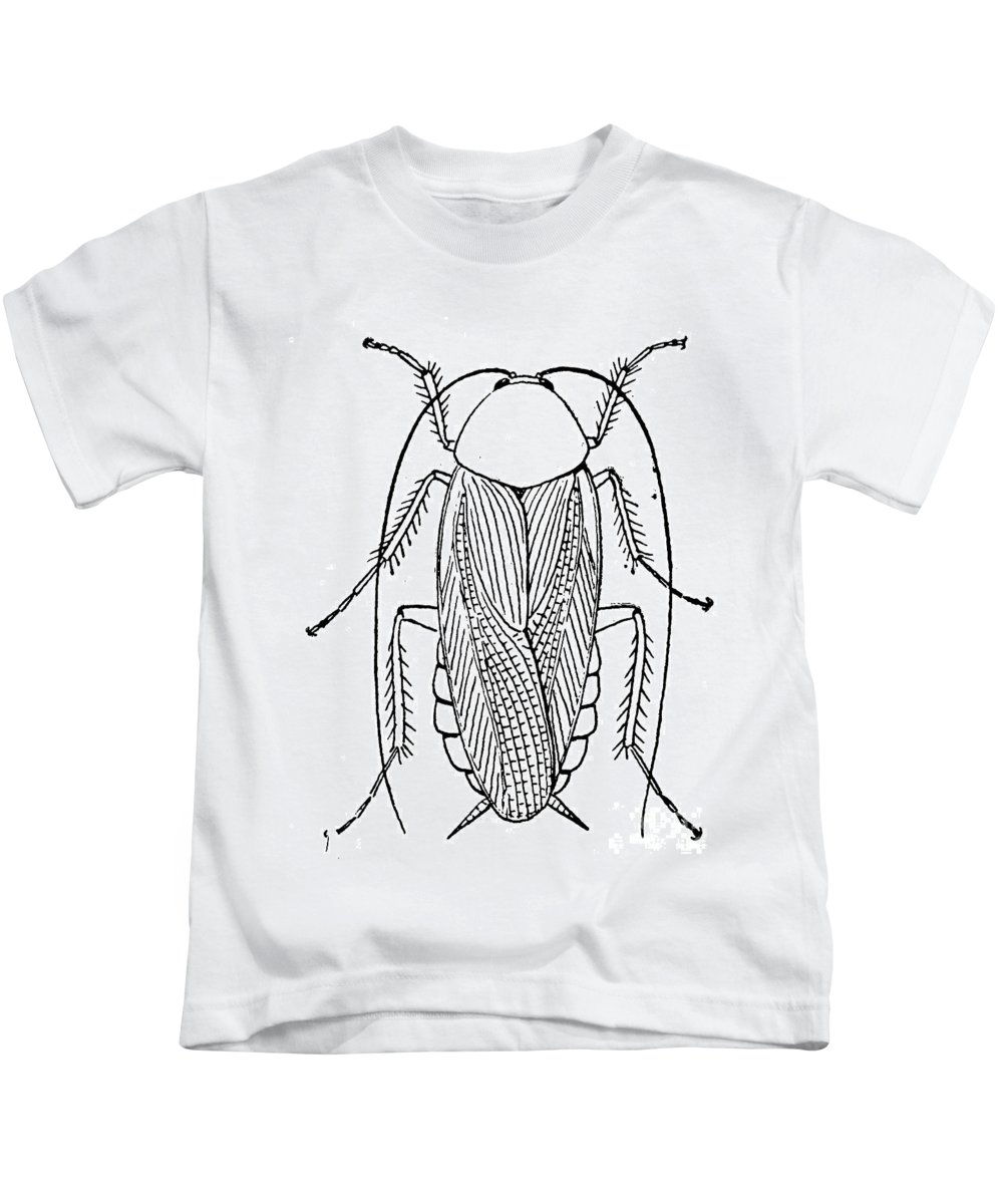 Animal Kids T-Shirt featuring the photograph Cockroach by Granger