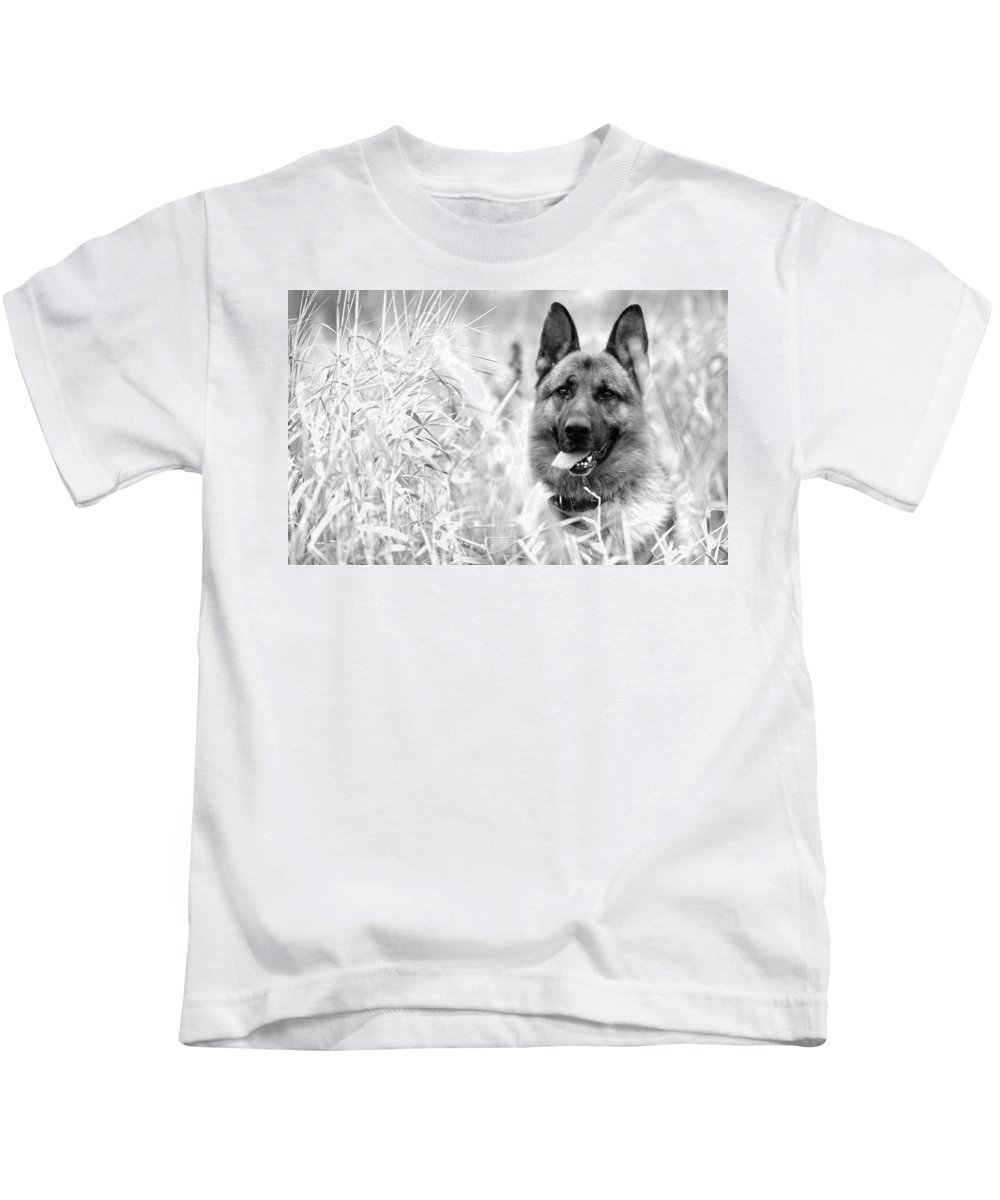 Dog Kids T-Shirt featuring the photograph Dog In Field by Sumit Mehndiratta