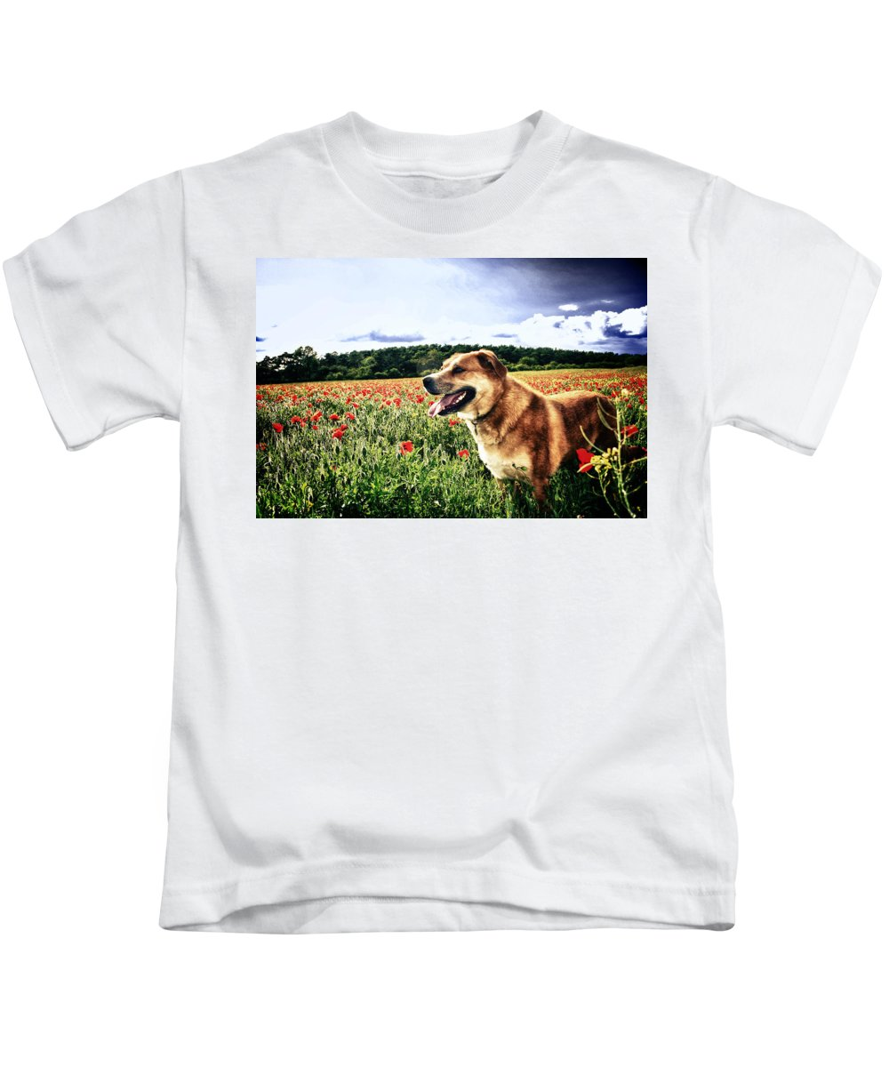 Poppy Kids T-Shirt featuring the photograph Dog In The Poppy Field by Vicki Field