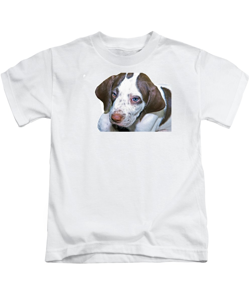 Animal Kids T-Shirt featuring the photograph English Pointer Puppy by Susan Leggett
