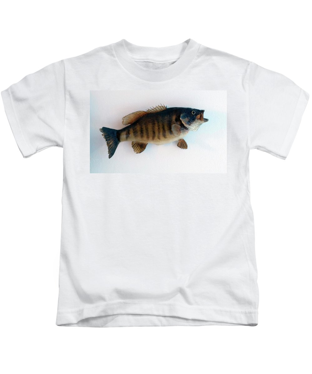 Animals Kids T-Shirt featuring the photograph Fish Mount Set 10 A by Thomas Woolworth
