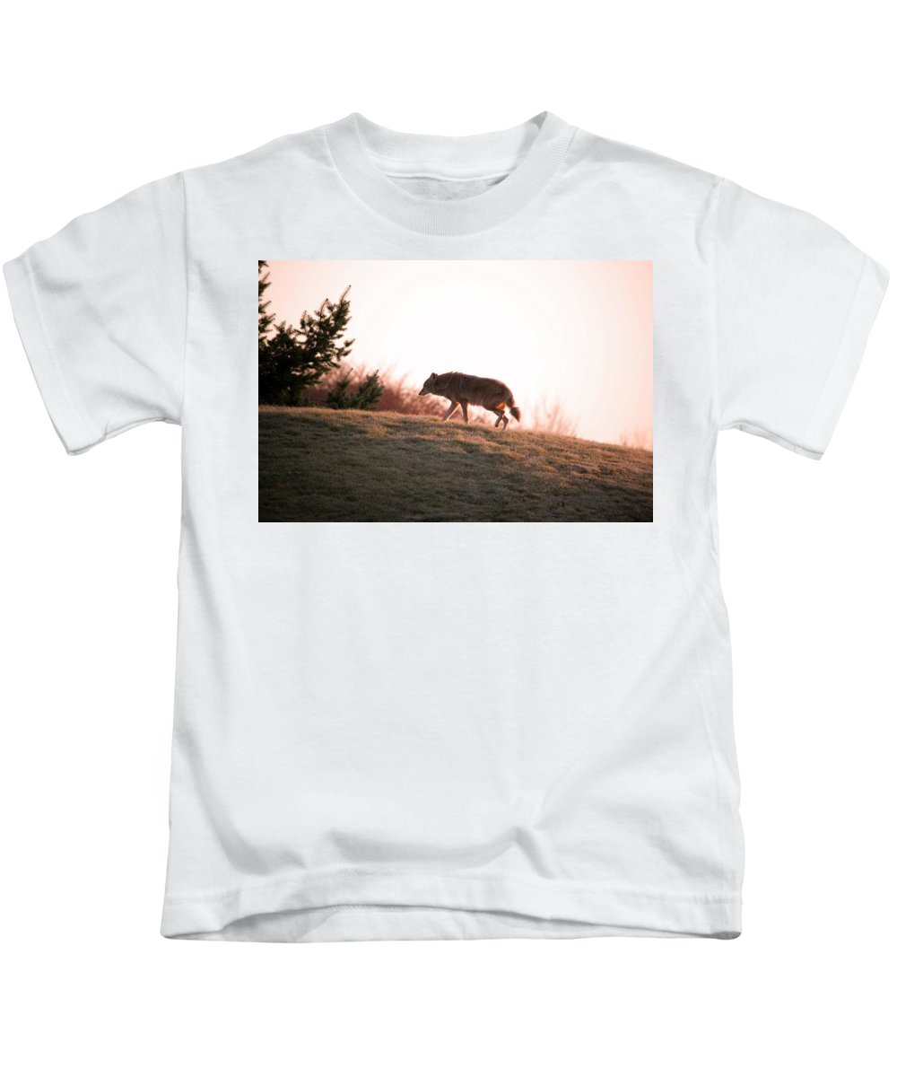 Coyote Kids T-Shirt featuring the photograph Forlorn One by Martin Cooper