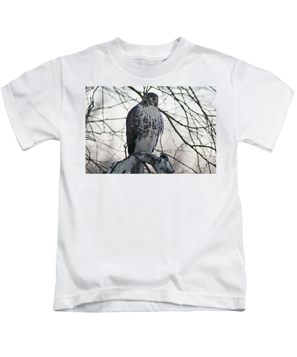 Hawk Kids T-Shirt featuring the photograph Hawk 9 by Joe Faherty