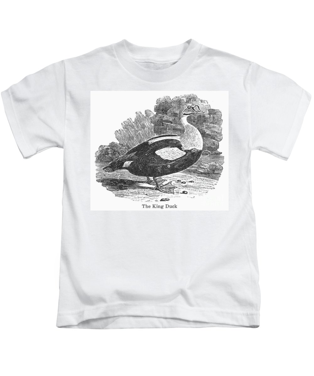 19th Century Kids T-Shirt featuring the photograph King Duck by Granger