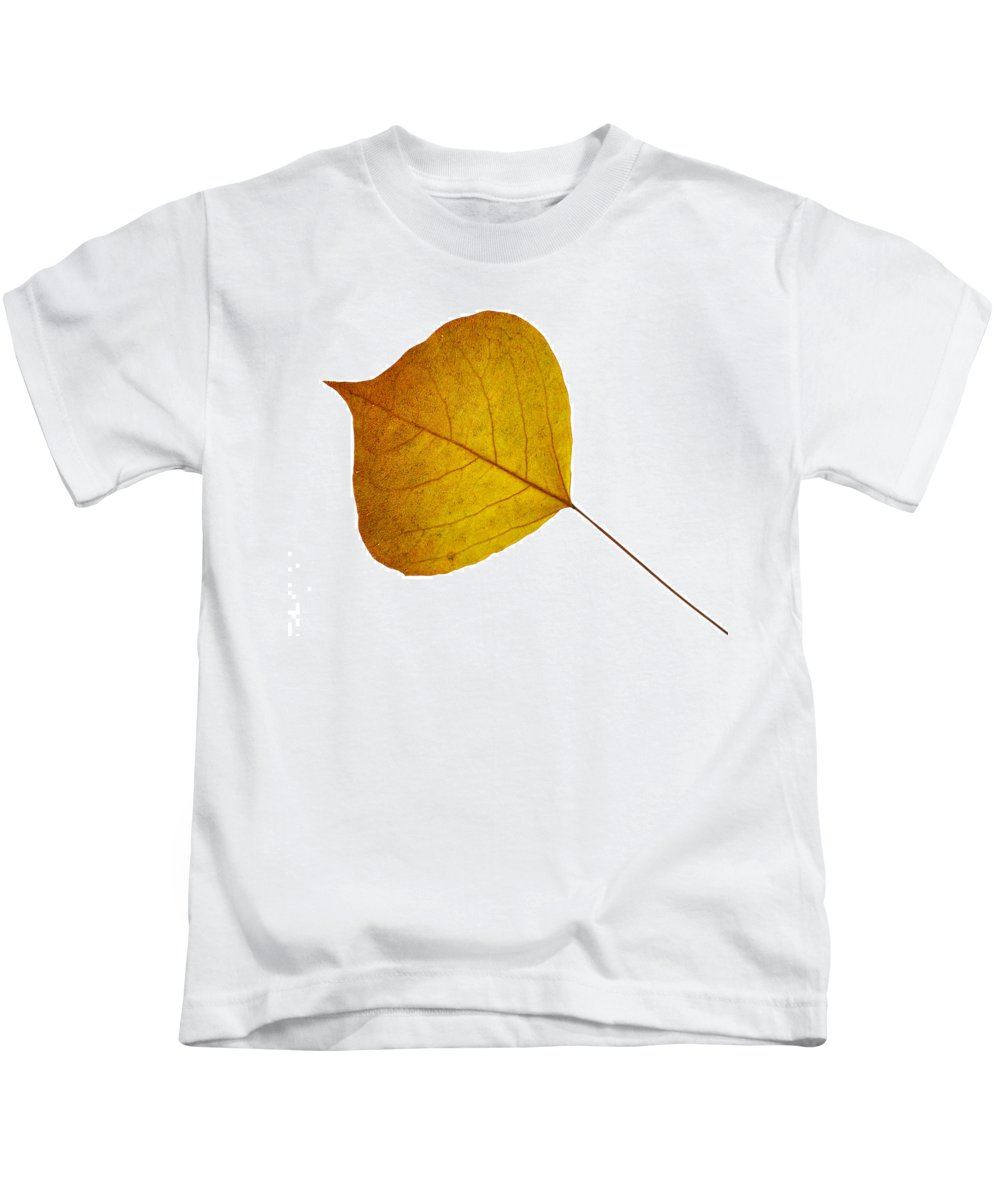 Leaves Kids T-Shirt featuring the photograph Leaves Ten by Ken Frischkorn