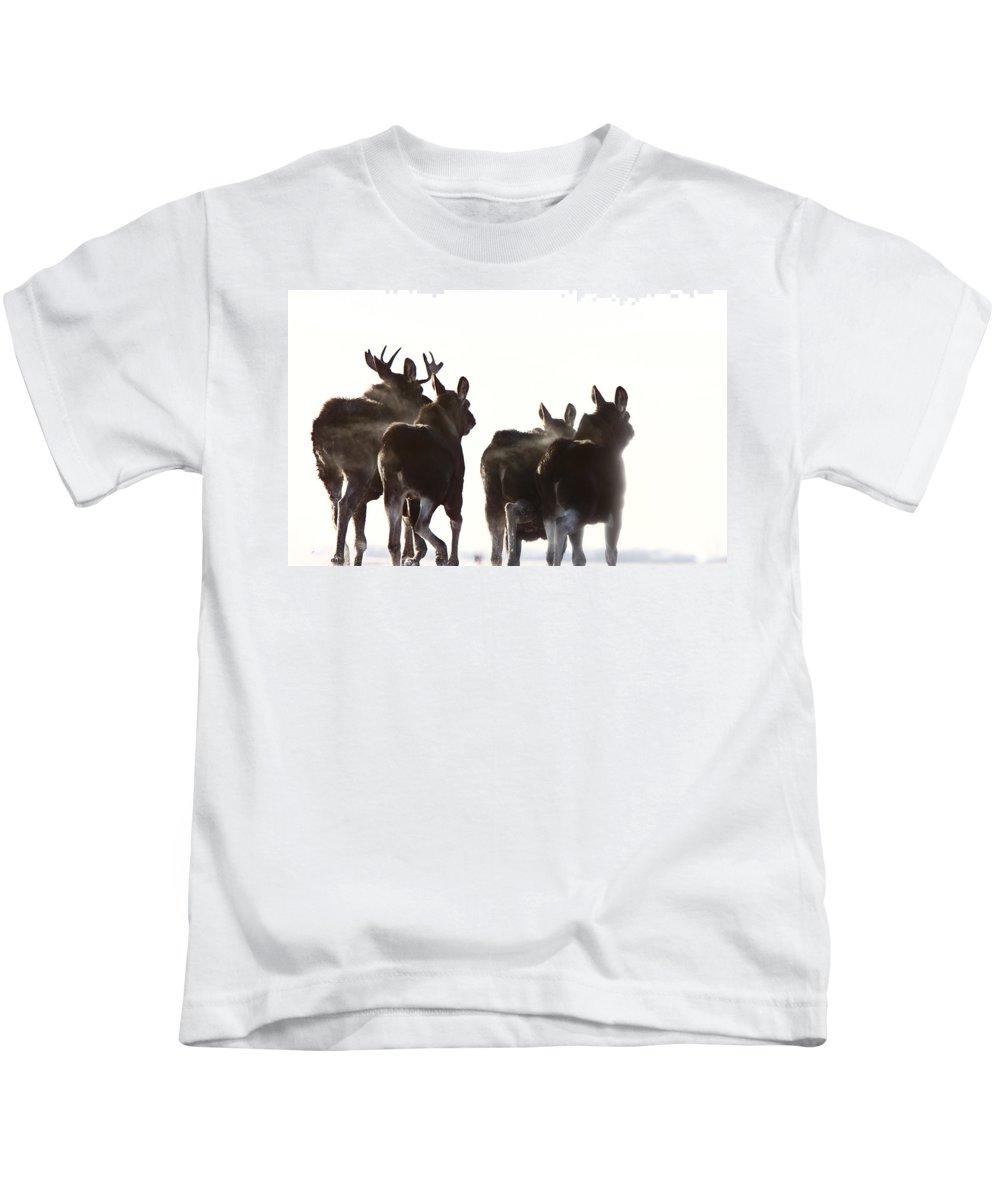 Moose Kids T-Shirt featuring the digital art Prairie Moose Saskatchewan by Mark Duffy