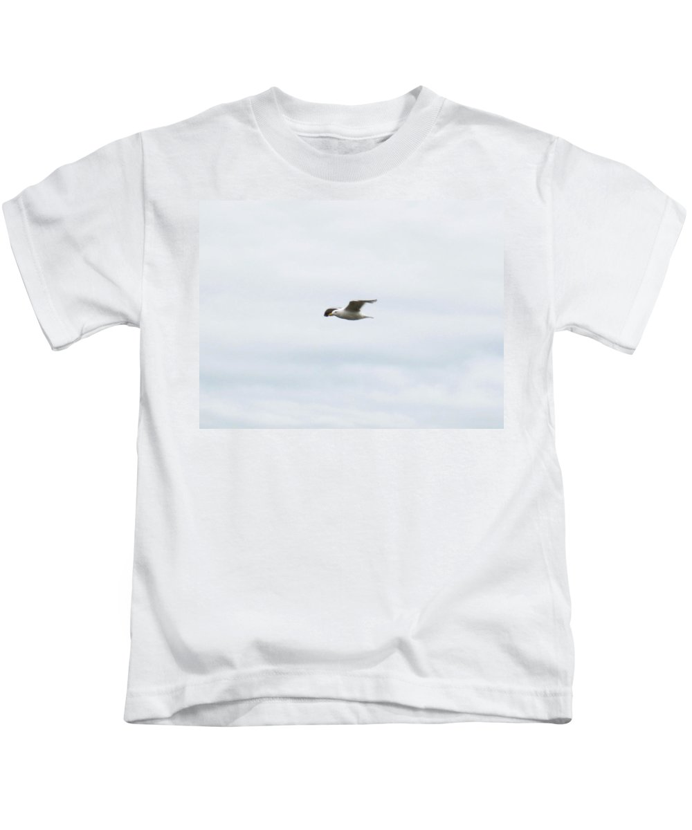 Seagull Kids T-Shirt featuring the photograph Seagull II by Linda Hutchins