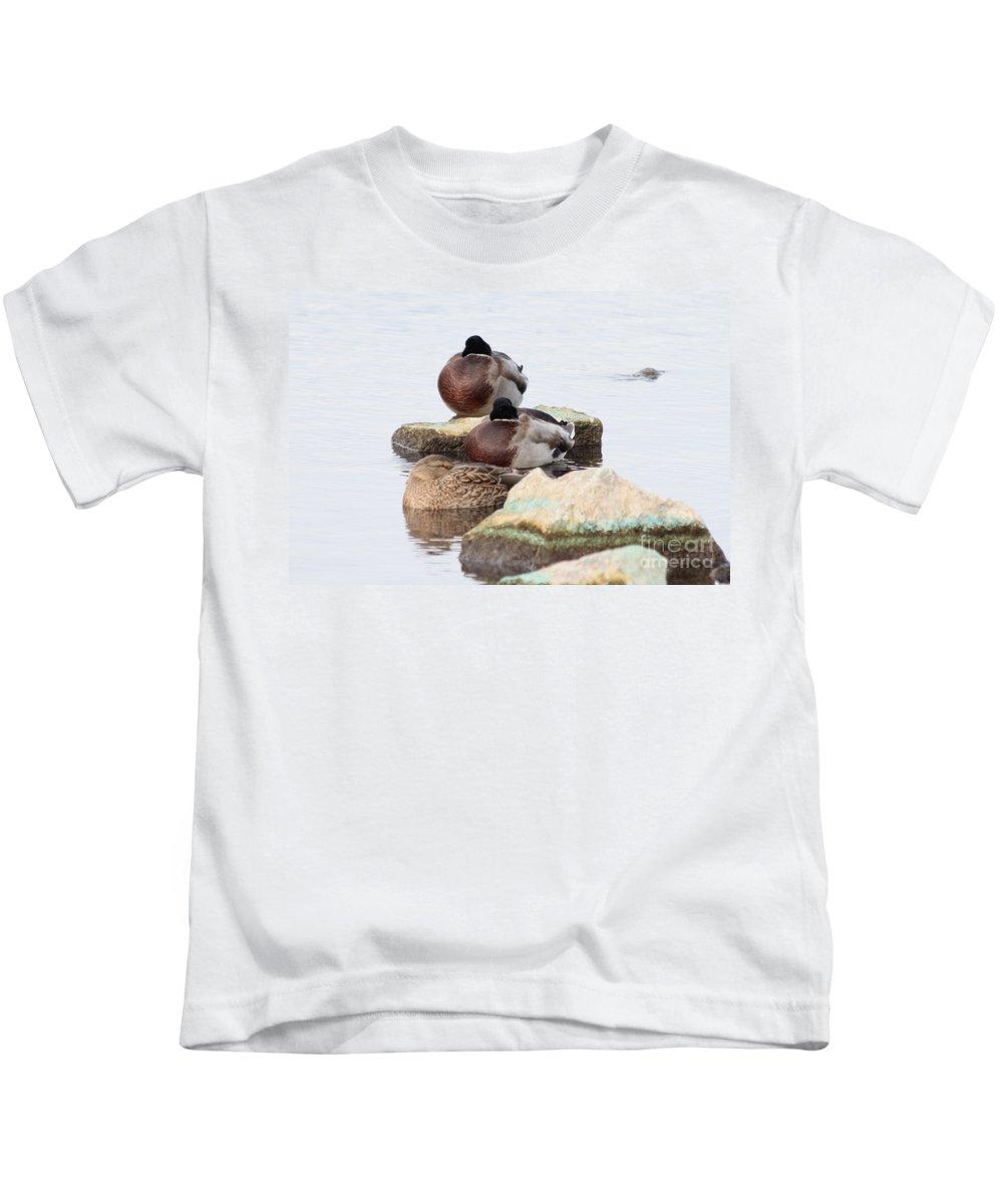 Mallard Kids T-Shirt featuring the photograph Sleeping Mallards by Lori Tordsen