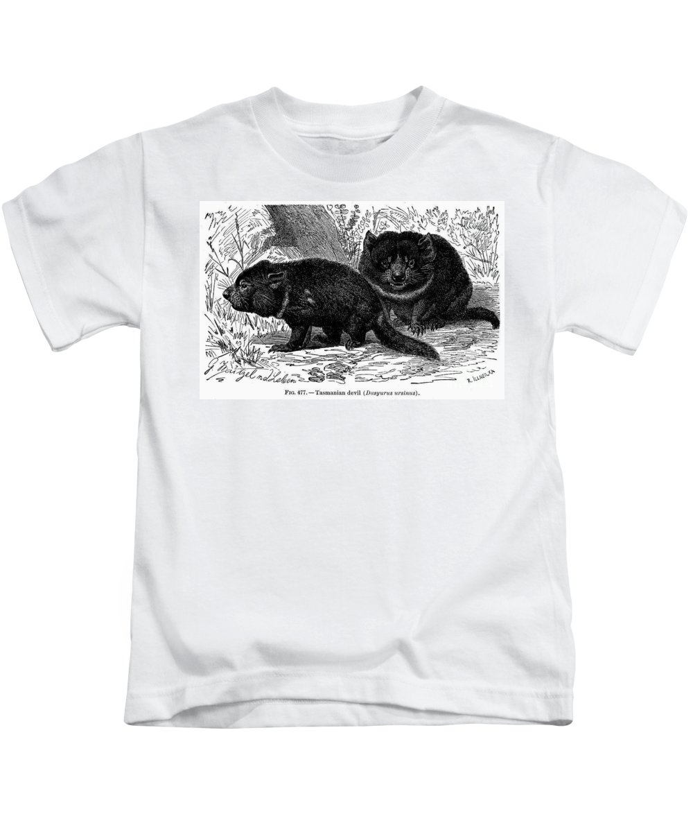 19th Century Kids T-Shirt featuring the photograph Tasmanian Devil by Granger