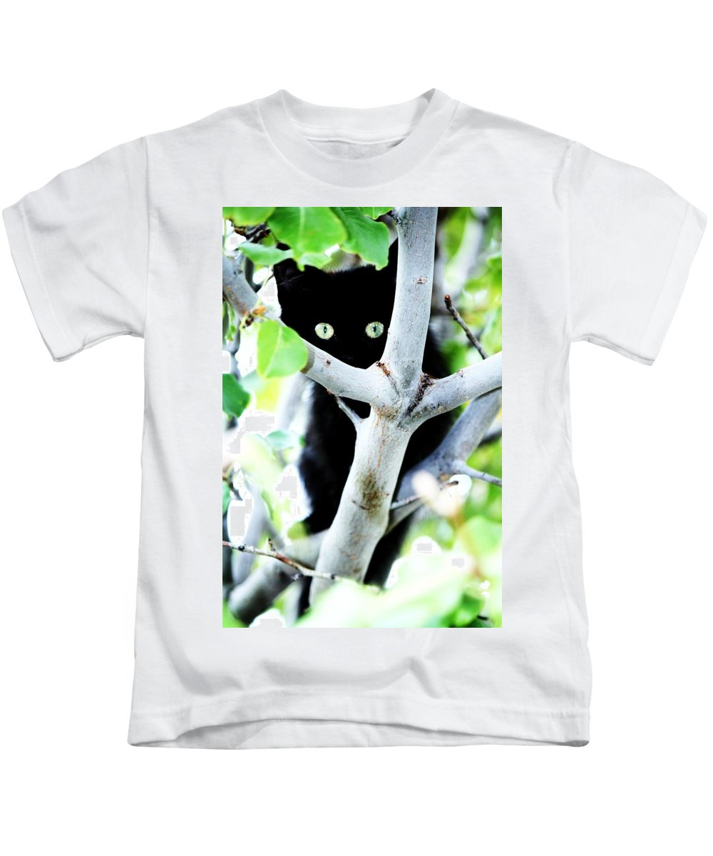 Kitten Kids T-Shirt featuring the photograph The Little Huntress by Jessica Shelton
