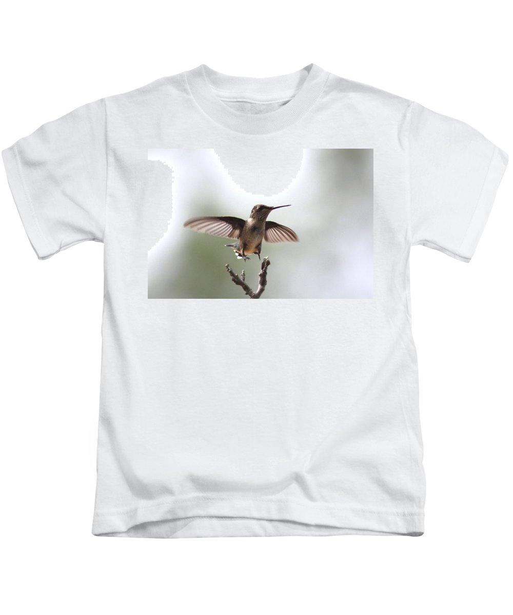 Hummingbird Kids T-Shirt featuring the photograph Vertical Takeoff by Travis Truelove