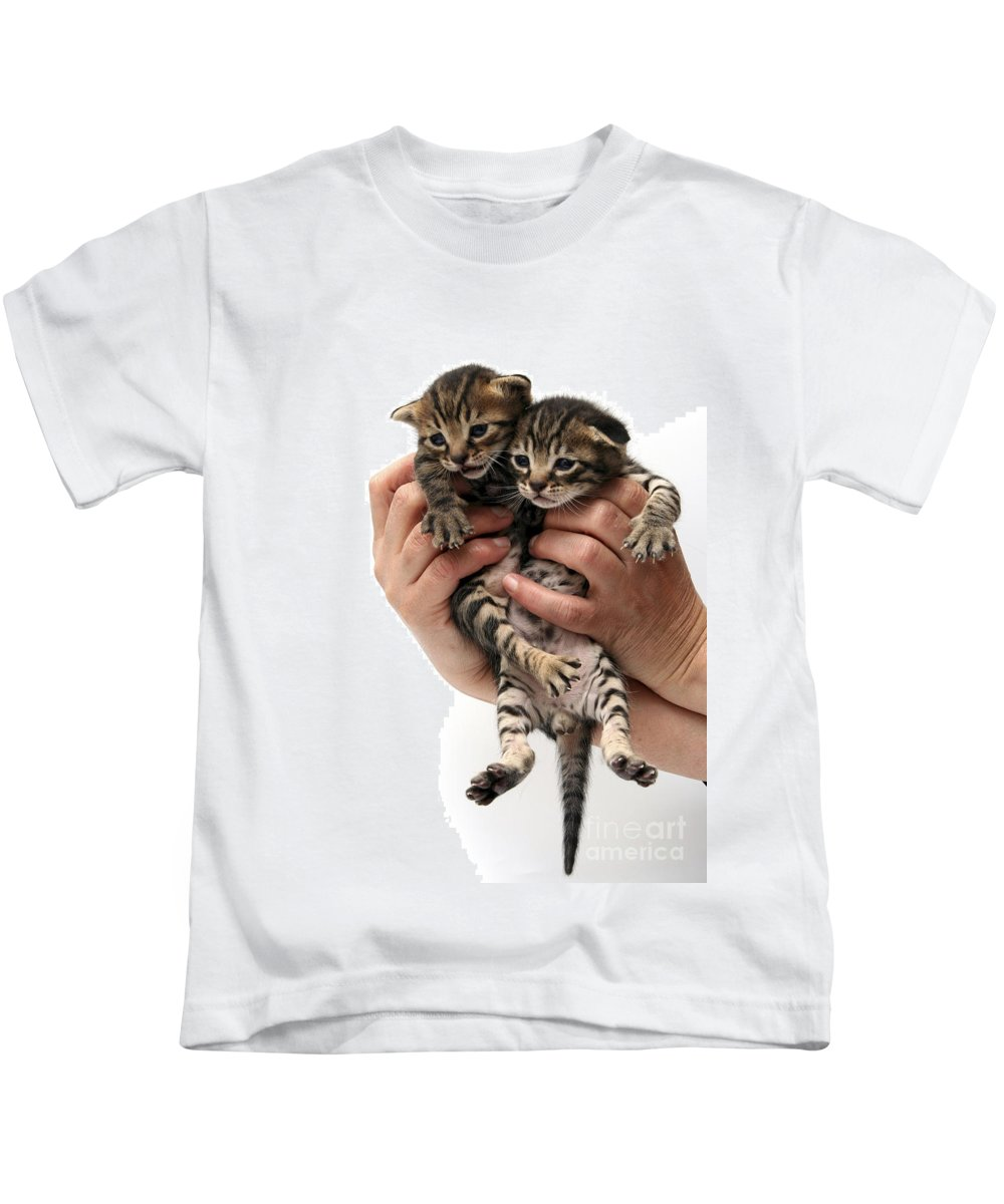 Cat Kids T-Shirt featuring the photograph One Week Old Kittens by Yedidya yos mizrachi
