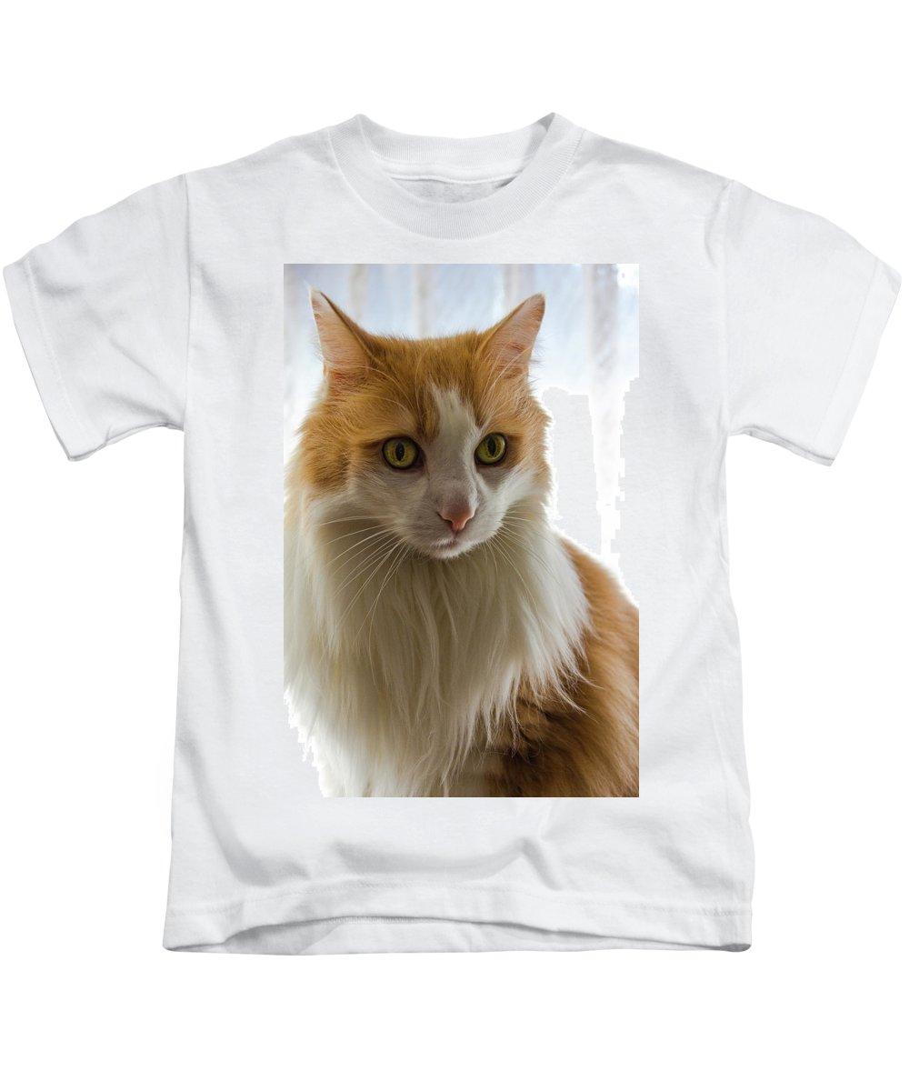 Animal Kids T-Shirt featuring the photograph The Boss by Peteris Vaivars