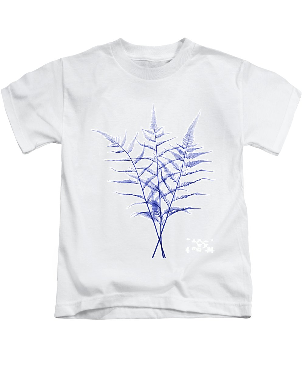 Science Kids T-Shirt featuring the photograph Fern, X-ray by Ted Kinsman