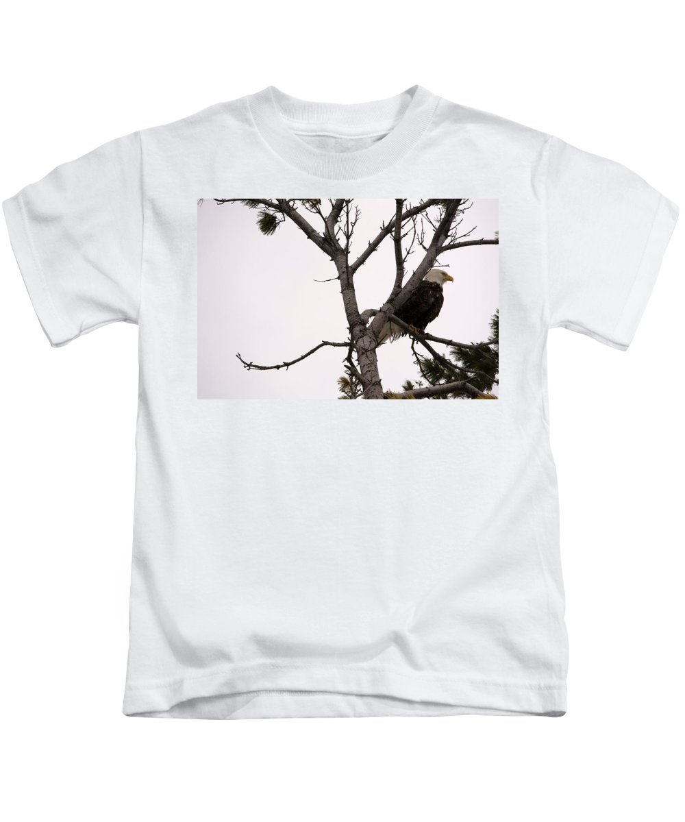 American Bald Eagle Kids T-Shirt featuring the photograph Sitting Proud by Linda Kerkau