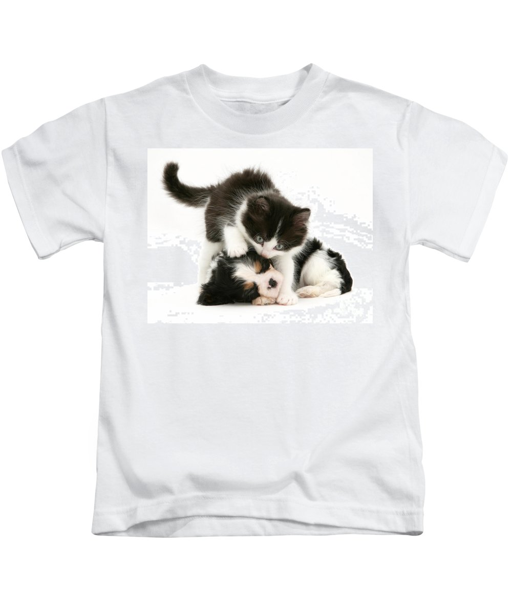 Animal Kids T-Shirt featuring the photograph Sleeping Puppy by Jane Burton