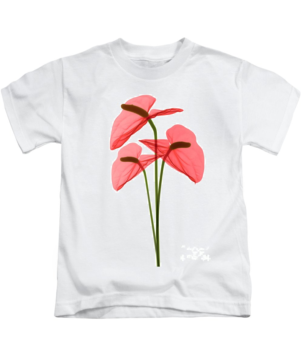 Science Kids T-Shirt featuring the photograph Anthurium Flowers, X-ray by Ted Kinsman