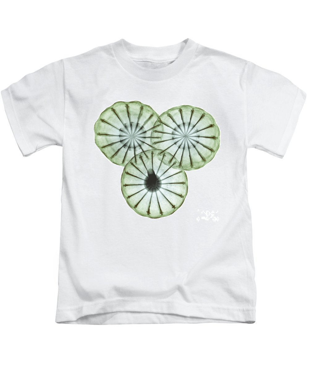 Science Kids T-Shirt featuring the photograph Opium Poppy Pods, X-ray by Ted Kinsman