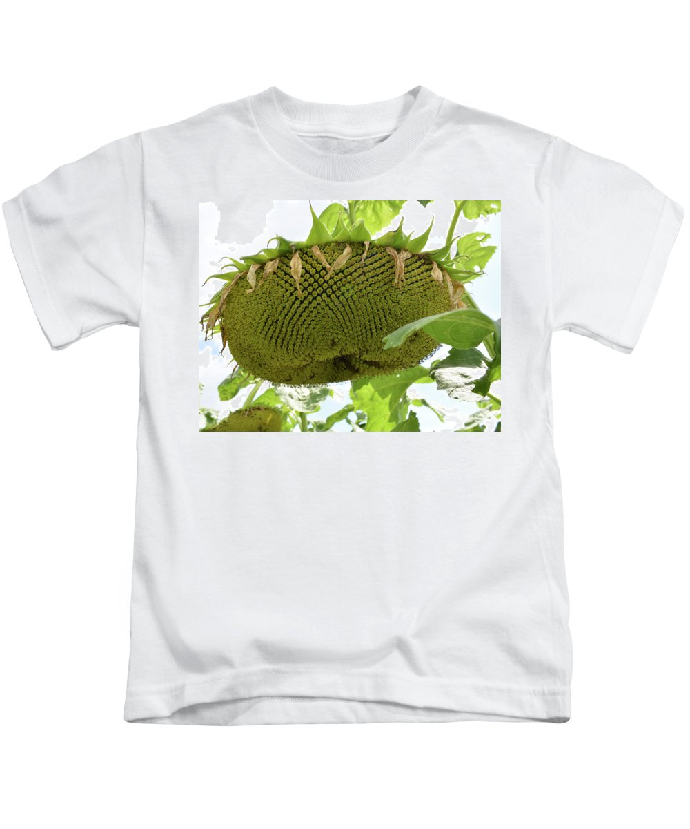 Sunflower Kids T-Shirt featuring the photograph A Perfect Pattern by To-Tam Gerwe