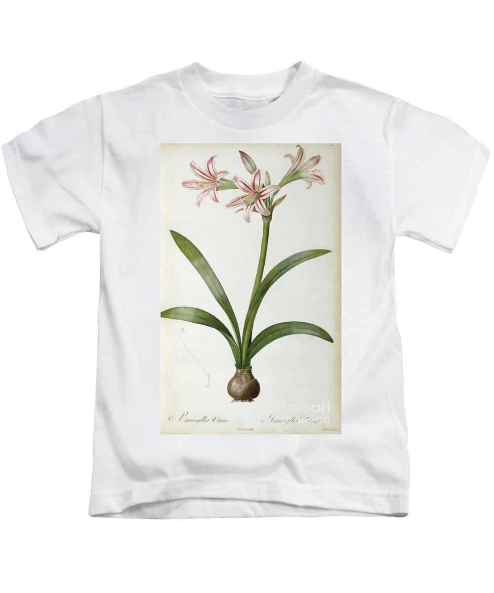 Amaryllis Kids T-Shirt featuring the painting Amaryllis Vittata by Pierre Redoute