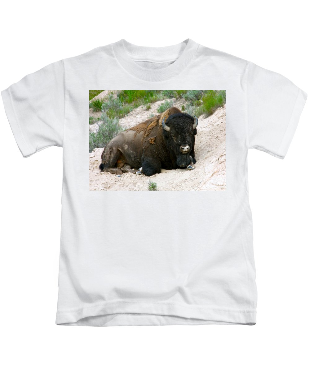 America Kids T-Shirt featuring the photograph American Bison by Karon Melillo DeVega