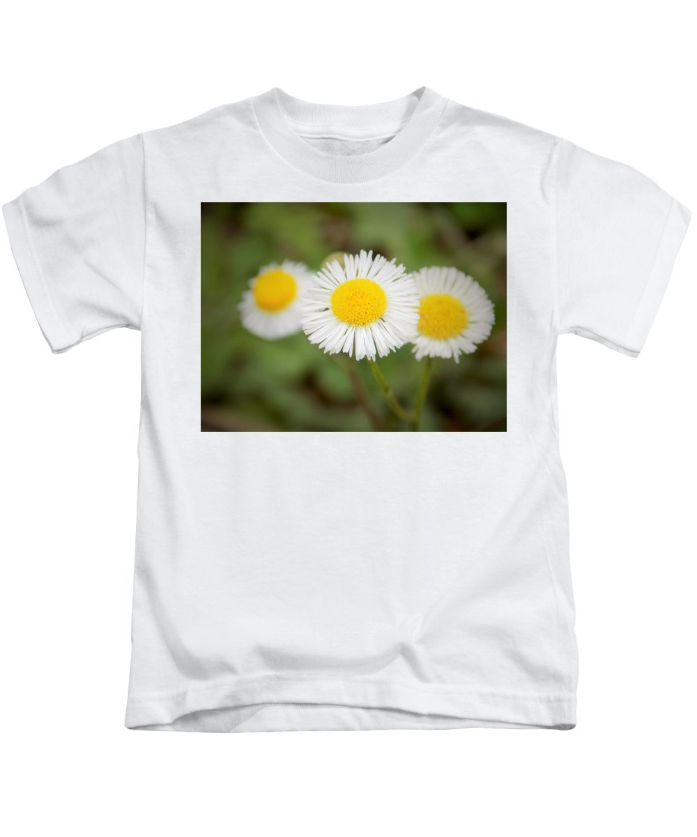 Aster Kids T-Shirt featuring the photograph Aster by Sarah Barba