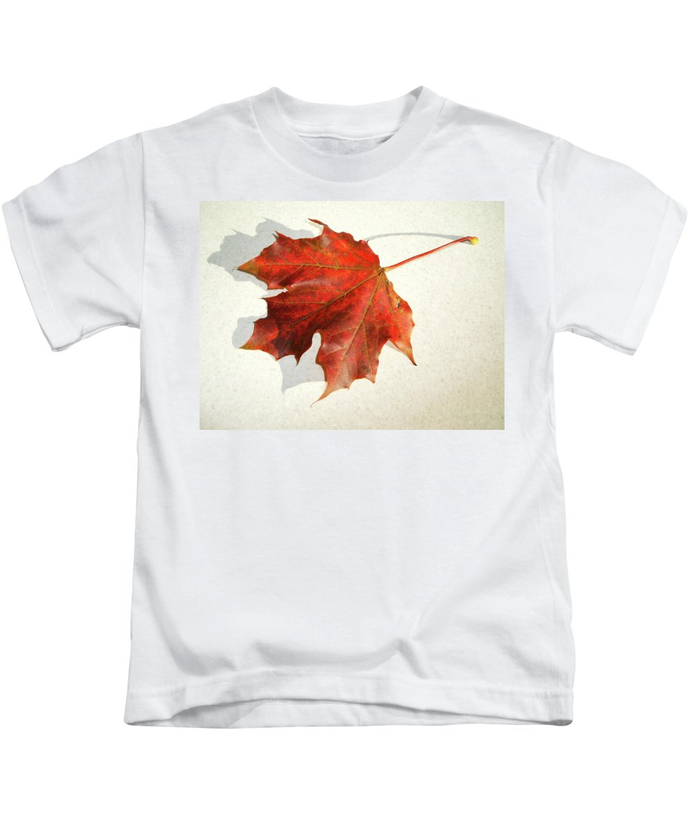 Brown Leaf Kids T-Shirt featuring the photograph Autumn Leaf by Cliff Norton